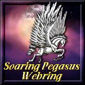 Soaring Pegasus Netring